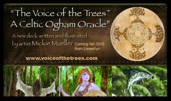 Voice of the Trees: A Celtic Ogham Oracle Deck grove