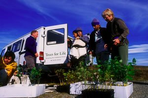 Volunteers, minibus and seedlings