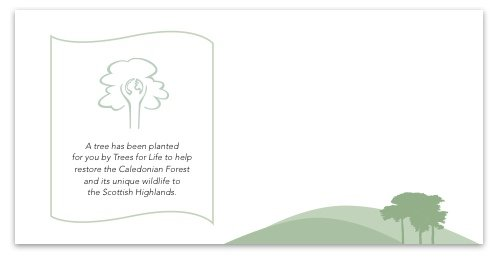 Plant a Tree gift card (Oak)- Free delivery