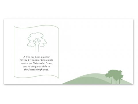 Plant a tree gift card scots pine free delivery negle Gallery