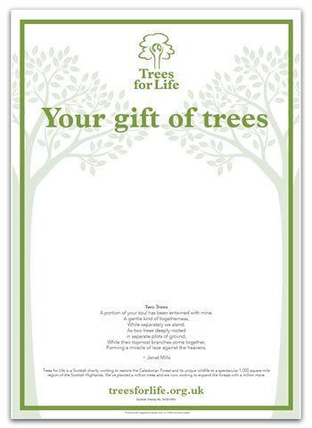 Dedicate trees with a personalised certificate