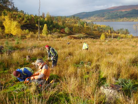 A volunteer group working in Glen Garry.