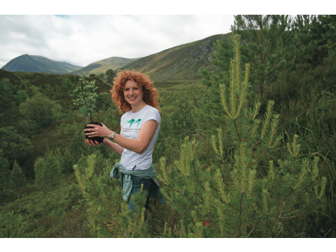 Trees for Life Patron Vanessa Collingridge about to plant a young holly tree at Meallan in July 2007 (note the healthy growth of the Scots pines planted in 1992/3).