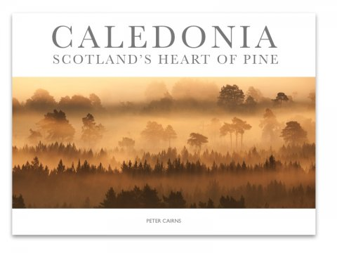 """Caledonia - Scotland's Heart of Pine"" (eBook)"