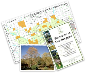 Sponsor an acre | Trees for Life