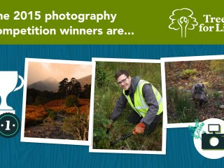 2015 photo comp winners