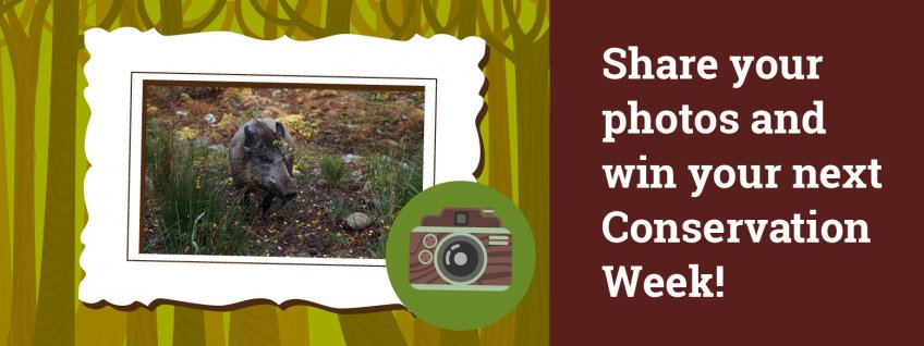 Share your photos and win your next Conservation Week!