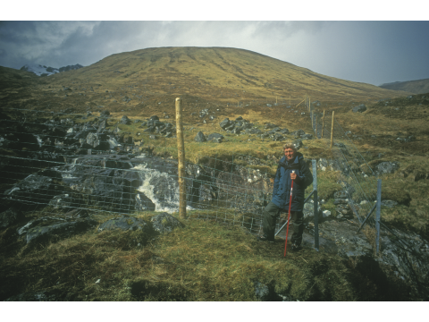 Adam Powell beside the bottom end of the Allt Beithe Garbh exclosure in May 1995, as the fence was nearing completion.