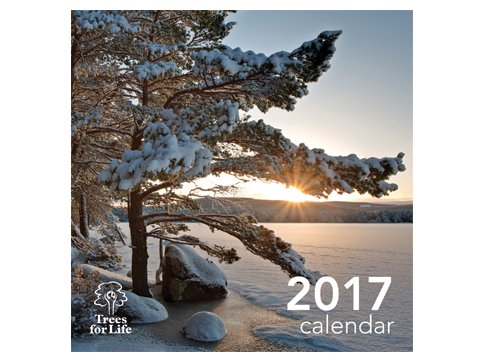 Trees for Life calendar 2017 <br><b>HALF PRICE</b>