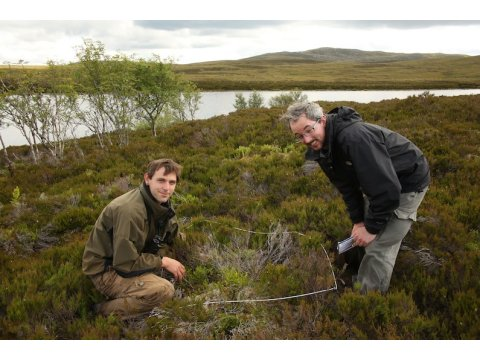 Tristan Dougan and Badger Pigott doing a quadrat survey on the island. Birch (Betula spp.) can be seen in the background, while heather (Calluna vulgaris) is abundant.