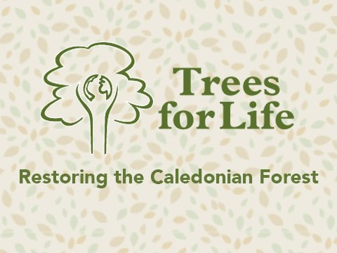 Promote presentation | Trees for Life