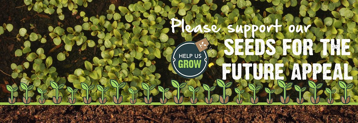 seeds-for-the-future-appeal2