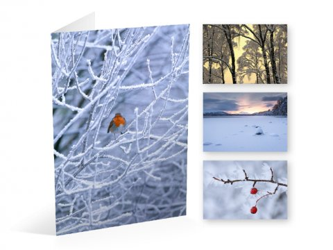 Winter Landscape cards