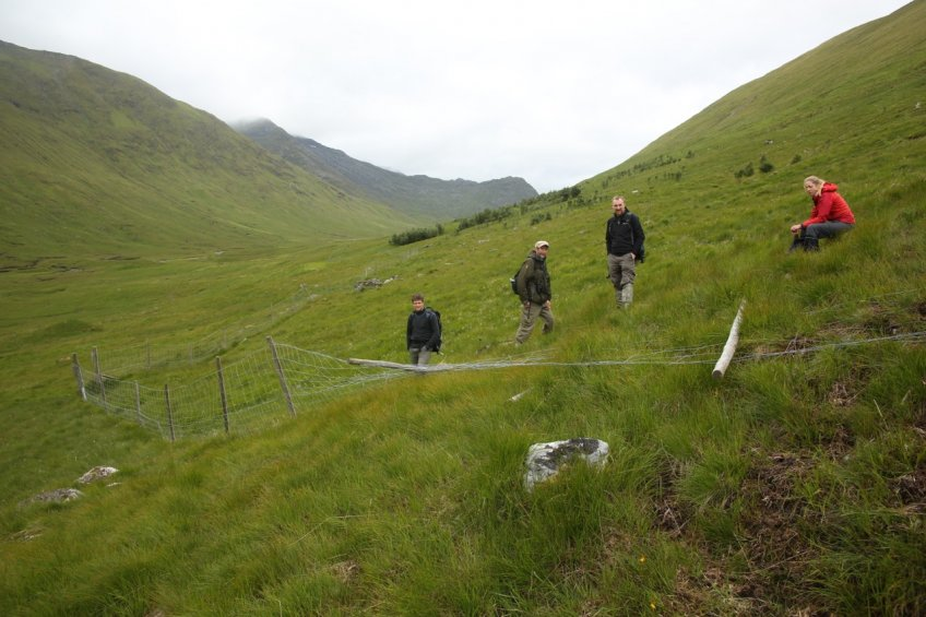 TFL staff West Affric fence(small)-1