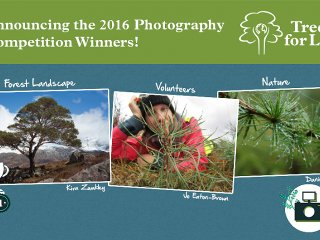 2016 Photography Competition Winners Banner