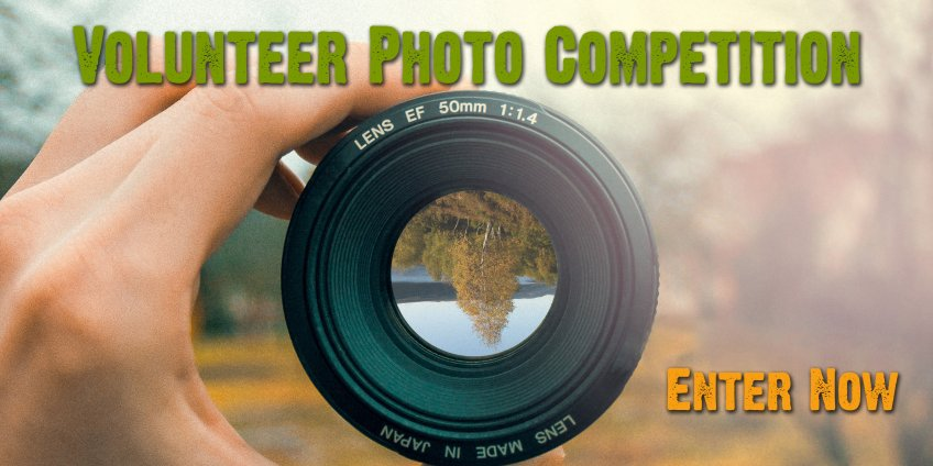 2018 photo competition banner