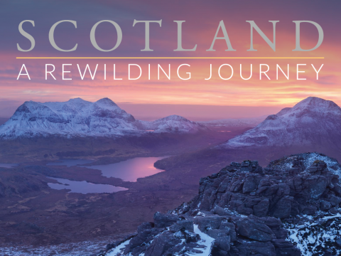 SCOTLAND: A Rewilding Journey