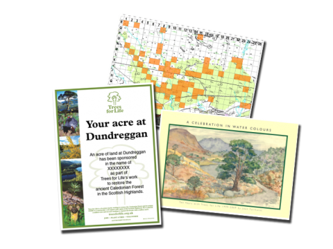 Sponsor an acre gift pack | Trees for Life