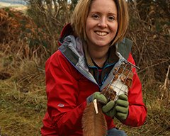 Volunteering with red squirrels