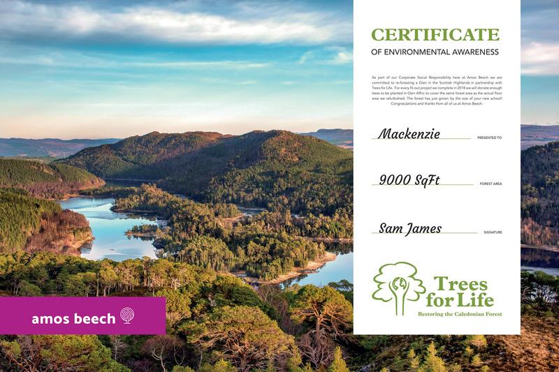 certificate_amos_beech_08.jpg