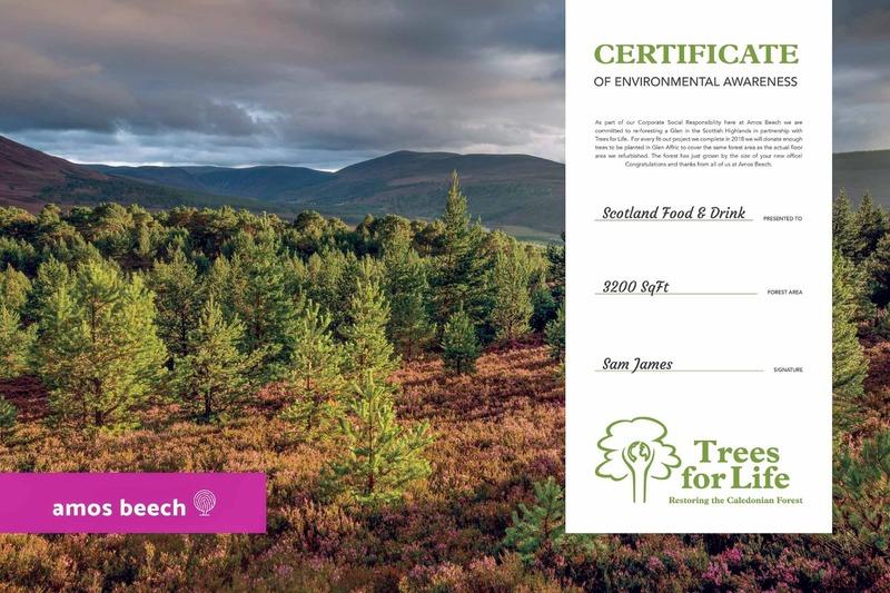 certificate_amos_beech_09.jpg